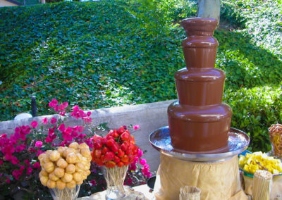 chocolate fountain and cookies